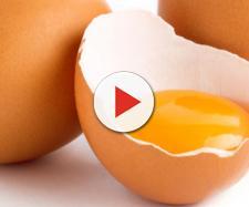 Uova alla salmonella ritirate dal mercato: marchio e data di scadenza da controllare