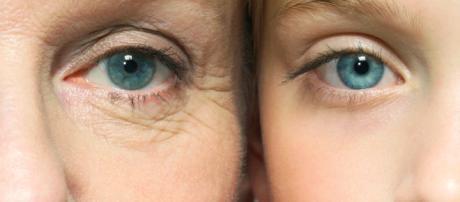 Envejecimiento biológico más diverso de lo que se pensaba. - infotiti.com