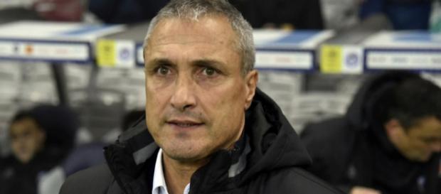 Bernard Casoni est convaincu que Luiz Gustavo doit être placé au milieu de terrain et non en défense.