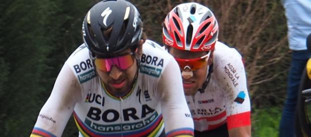 Peter Sagan inizia il suo 2019 al Tour Down Under