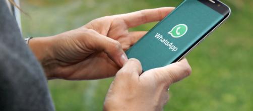 WhatsApp diventerà più sicuro e rispettoso della privacy