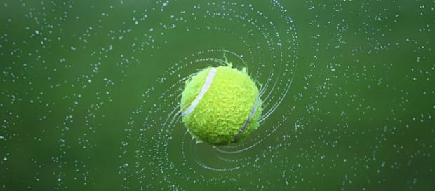 A tennis ball, much like one Andy Murray would use. [Image via Bess-Hamiti - Pixabay]