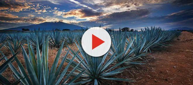 MÉXICO/ Los Pueblos Mágicos son uno de los principales atractivos turísticos del país