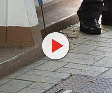 Livorno, cobra reale morde un uomo