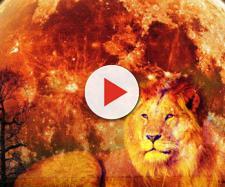 Oroscopo di domani 21 gennaio 2019 | Predizioni zodiacali e classifica: la Luna arriva nel segno del Leone