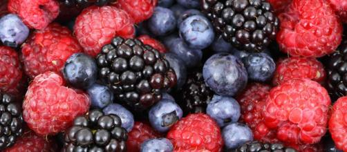 Frutti di bosco, immagine di Pixabay.