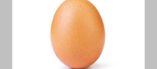 Imagem foi publicada pelo perfil 'Egg Gang'. (Foto Reprodução / Instagram)