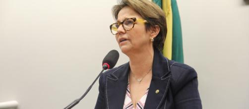 Ministra da Agricultura, Tereza Cristina (Reprodução/O Globo)