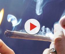 Danni da cannabis: adolescenti a rischio secondo un recente studio