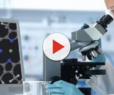 Importante passo avanti nella ricerca contro il cancro
