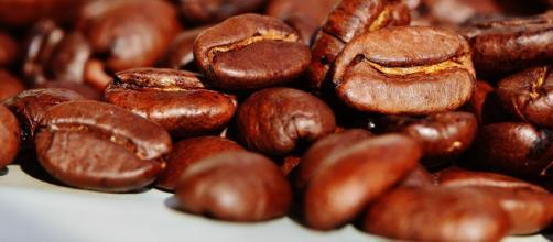 chicchi di caffè per decorare la torta, immagine di pixabay.