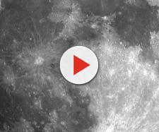 nasce cotone sulla faccia nascosta della Luna