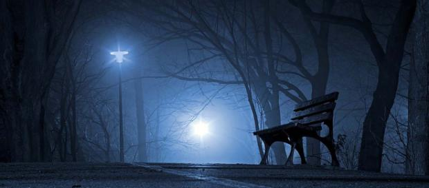 It's dark, foggy and spooky and there's a selection of horror films to watch, coming soon. [Image Pixabay]