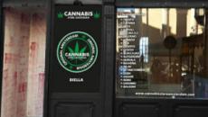 Cannabis: altri tre Stati Usa pronti a legalizzarla, in Italia è caos