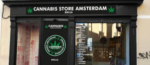 Un negozio di cannabis light in Italia