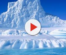 Antartide, scoperti resti di animali antichi in un 'lago perduto'