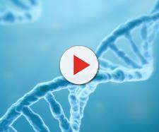 Altra gravidanza: nuovo bambino geneticamente modificato
