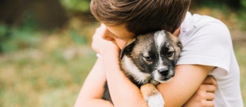 Crescer com um pet fortalece a imunidade e asseguram uma boa saúde emocional.
