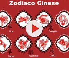 Oroscopo cinese: i 12 segni zodiacali e le loro caratteristiche