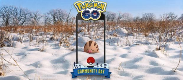 Swinub from Johto is the Pokemon for Community Day in February on 'Pokemon GO'. / Image: 'Pokemon GO' Twitter page