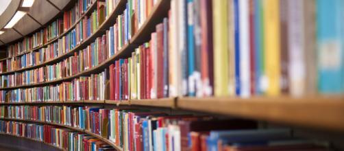 La crisi dei libri e l'Italia a due velocità che non ci piace ... - pellegrinogiornale.it