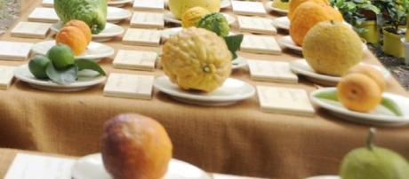 Agrumi, fonte di vitamina C: un aiuto per il sistema immunitario