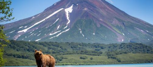 Le mete di viaggio del 2019 all'insegna dell'ecosostenibilità e della natura photo by oskar.si