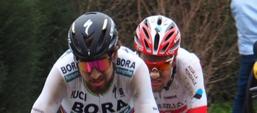 Peter Sagan sarà al via del Tour Down Under