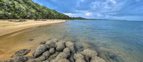 Ilhas por todo o Brasil surpreendem por sua beleza (Fonte: Pixabay)