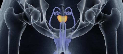 Cancro ai testicoli: alcuni campanelli d'allarme