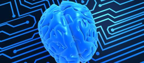 Las diez claves de la neurociencia para mejorar el aprendizaje ... - educacionyculturaaz.com