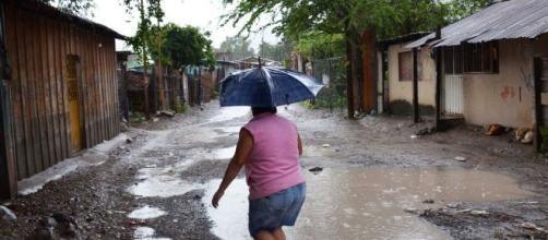 Intensas lluvias siguen manteniendo en alerta a la población de Chiapas. - adn40.mx