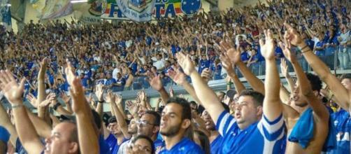 Cruzeiro busca reagir no campeonato contra o São Paulo. (Reprodução/Instagram/@cruzeiro/@_andrelaraujo)