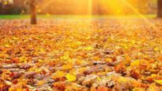 L'oroscopo del giorno 23 ottobre, da Bilancia a Pesci: il Sole transita in Scorpione
