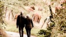 Pensioni anticipate e LdB 2020, la Cgil oltre Q100: 'Flessibilità per tutti da 62 anni'