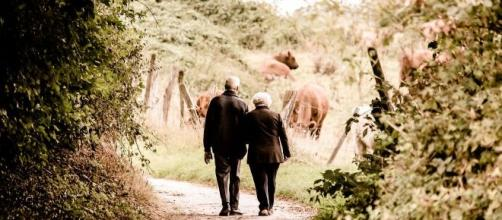 Pensioni e Manovra 2020, la Cgil torna a chiedere l'uscita per tutti dai 62 anni di età.