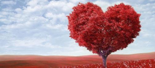 Previsioni astrologiche, classifica sull'amore di novembre: Scorpione trasgressivo, Pesci galante.