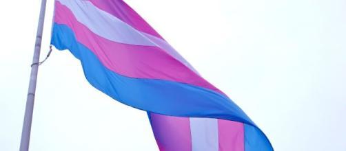 Activista trans Bessy Watson asesinada en Honduras - America Latina - hivos.org