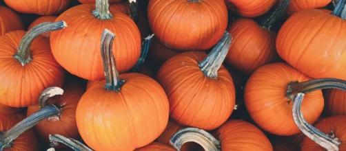 Descubre cómo se celebra Halloween en EEUU - AGM - agmeducation.com