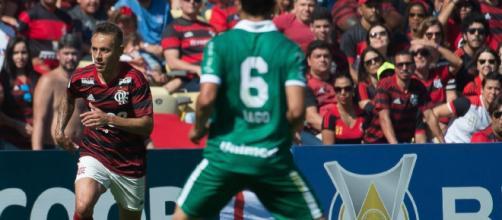 Goias X Flamengo Onde Assistir O Jogo Ao Vivo Escalacoes E Desfalques