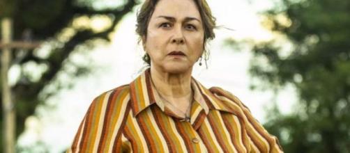 'A Dona do Pedaço': Evelina deixa de ser apenas 'mãe de Maria da Paz'. (Divulgação/ Rede Globo)