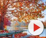 Oroscopo giorno 12 novembre: Toro distratto, dubbi in amore per Cancro