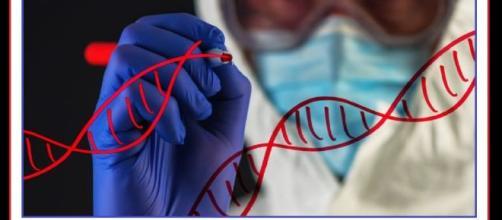 Negli Stati Uniti una start-up offre un test genetico sugli embrioni. Il test è disponibile in 12 cliniche nel mondo, di cui 6 negli USA.