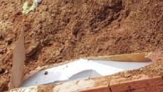 Corpo de mulher é encontrado fora do túmulo em Gravataí (RS)