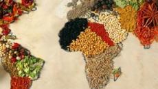 La Dieta Mediterránea y su influencia mundial en la actualidad