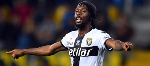 Parma: Gervinho potrebbe farcela per Bologna, Inglese no