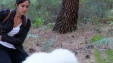 La Caccia Monteperdido, spoiler terza puntata: Joaquin deciso a trovare la figlia