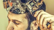 Striatum : notre cerveau pourrait avoir notre peau à force de nous mener à la surconsommation