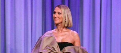 Céline Dion a failli être attaqué par un militant vegan. Credit: Instagram/celinedion
