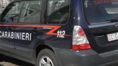 Torino, feto umano trovato in una provetta in piazza Benefica: indagini in corso